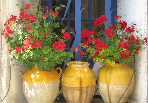Flowerpots in Roussillon