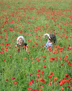Swimming in the poppies