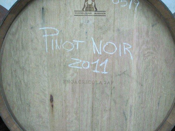 New Pinot Noir in barrel