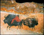 Lascaux Back to Back Bison, known as the 'Sistine Chapel of Prehistory'