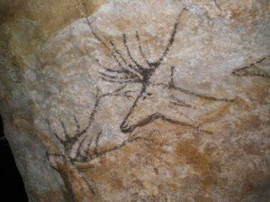 Swimming Deer, Le Thot also seen at Lascaux 3