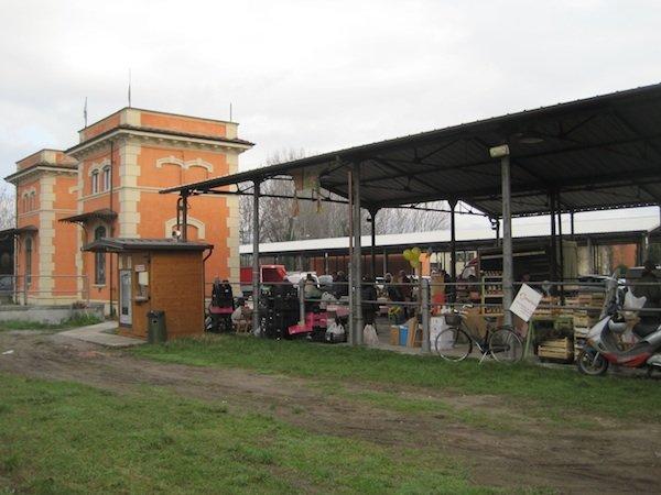 Farmers' market, Foro Boario