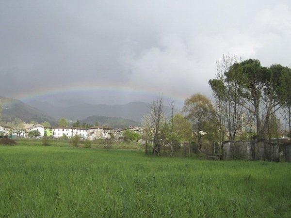 Rainbow over farro