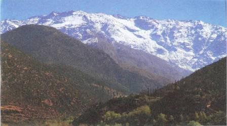 Macmillan Cancer Support Atlas mountains