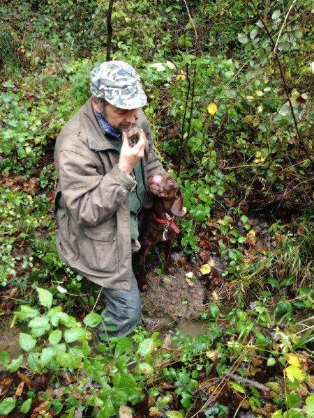 White truffles are in season