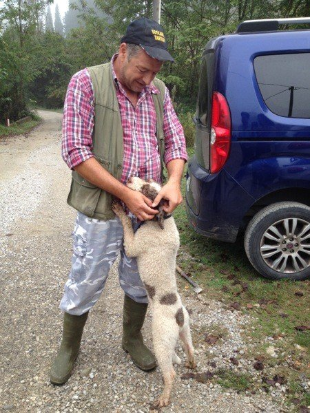 Riccardo and Turbo at the start of a truffle hunt