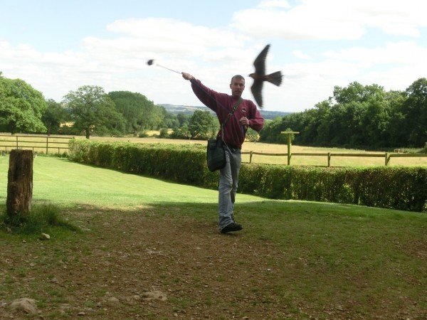 Bill's photo at Cotswold Falconry