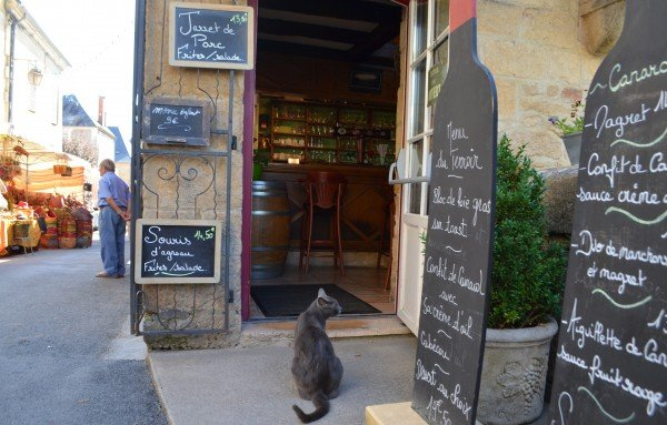 Bob's photo of a cat in the Perigord