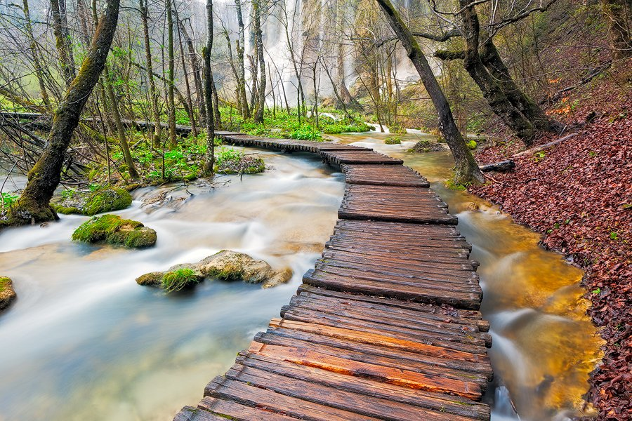 Plitvice Lakes National Park, Croatia. Using a polarizer for this scene reduced the glare on the boardwalk, reduced the glare in the green foliage and slowed the shutter speed down to 2 seconds to give the water the blurry effect.