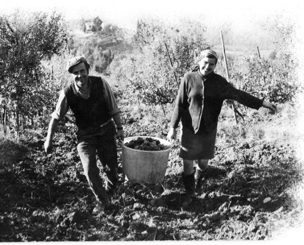 Guiliano and Anna, Francesco's parents working on the farm in years past (photo from Vallone di Cecione)