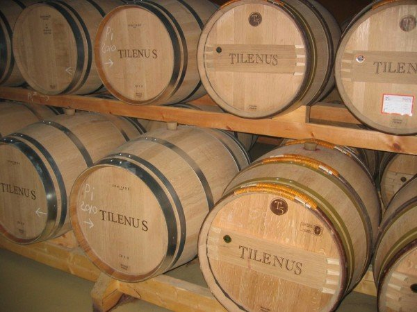 Oak Barrels at Tilenus Winery