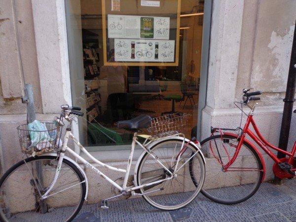 bicyclesudine