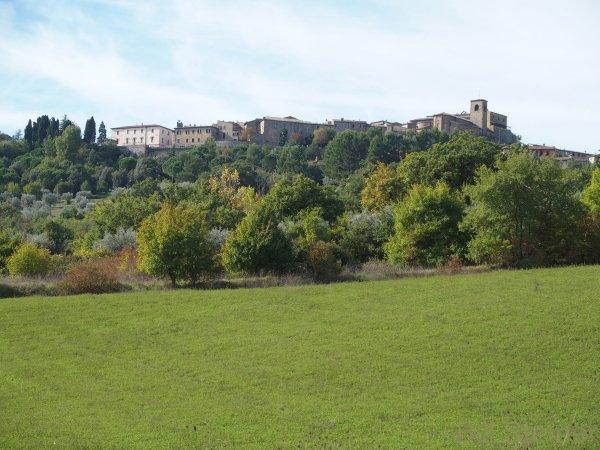 Simona's farm house sits below Allerona