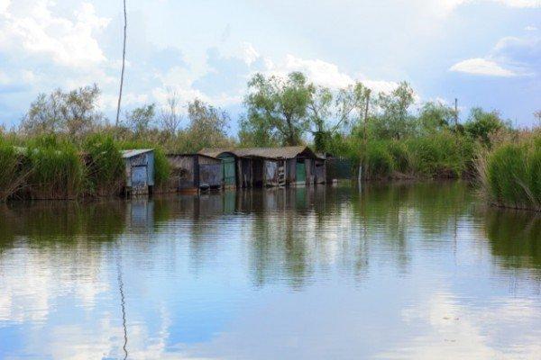 Abandoned boat houses