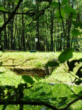 Lascaux, environmental monitoring