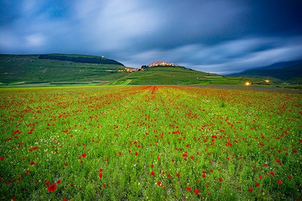 colorful_fields_castelluccio_piano_grande_umbria_italy