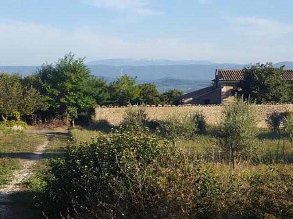 Bonnieux farmhouse
