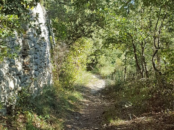 Luberon trail