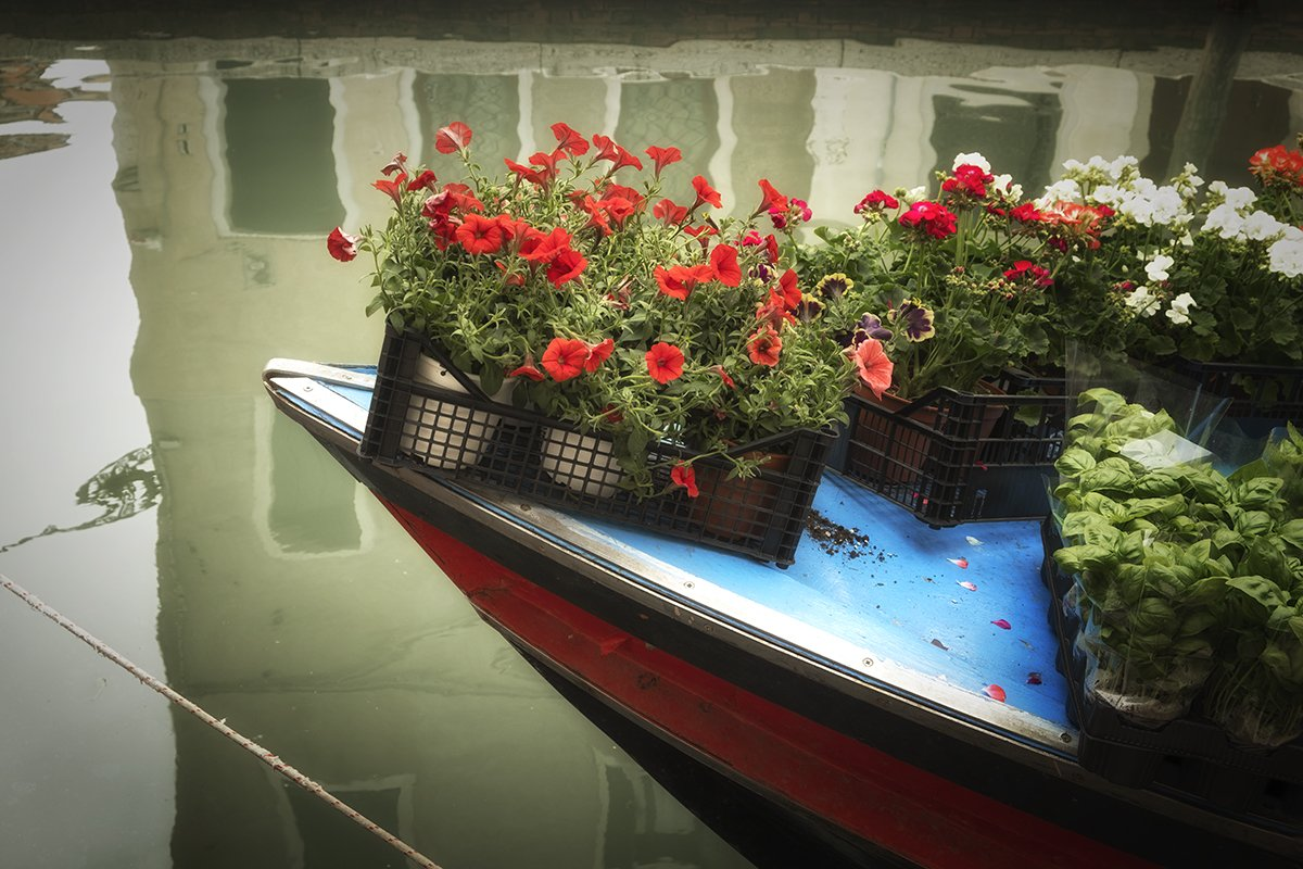 Venice_Italy_flowers on boat_1200