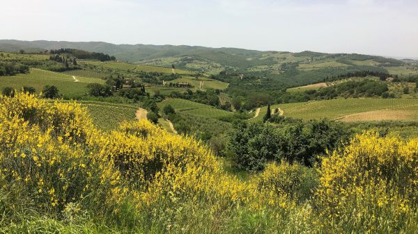 chianti_experiences_hills