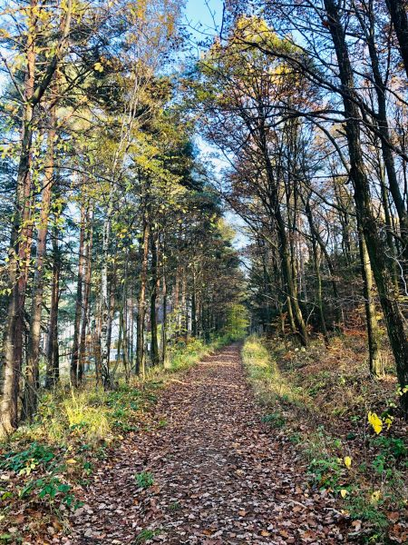 Hiking trail in Lower Silesia region of Poland