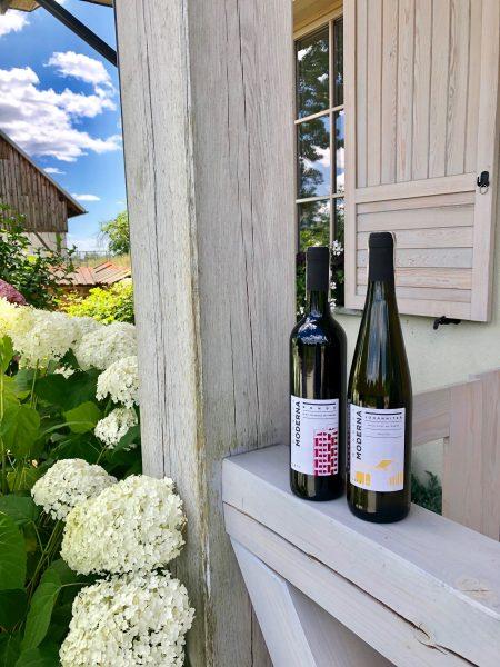 Moderna Vineyard Polish wine