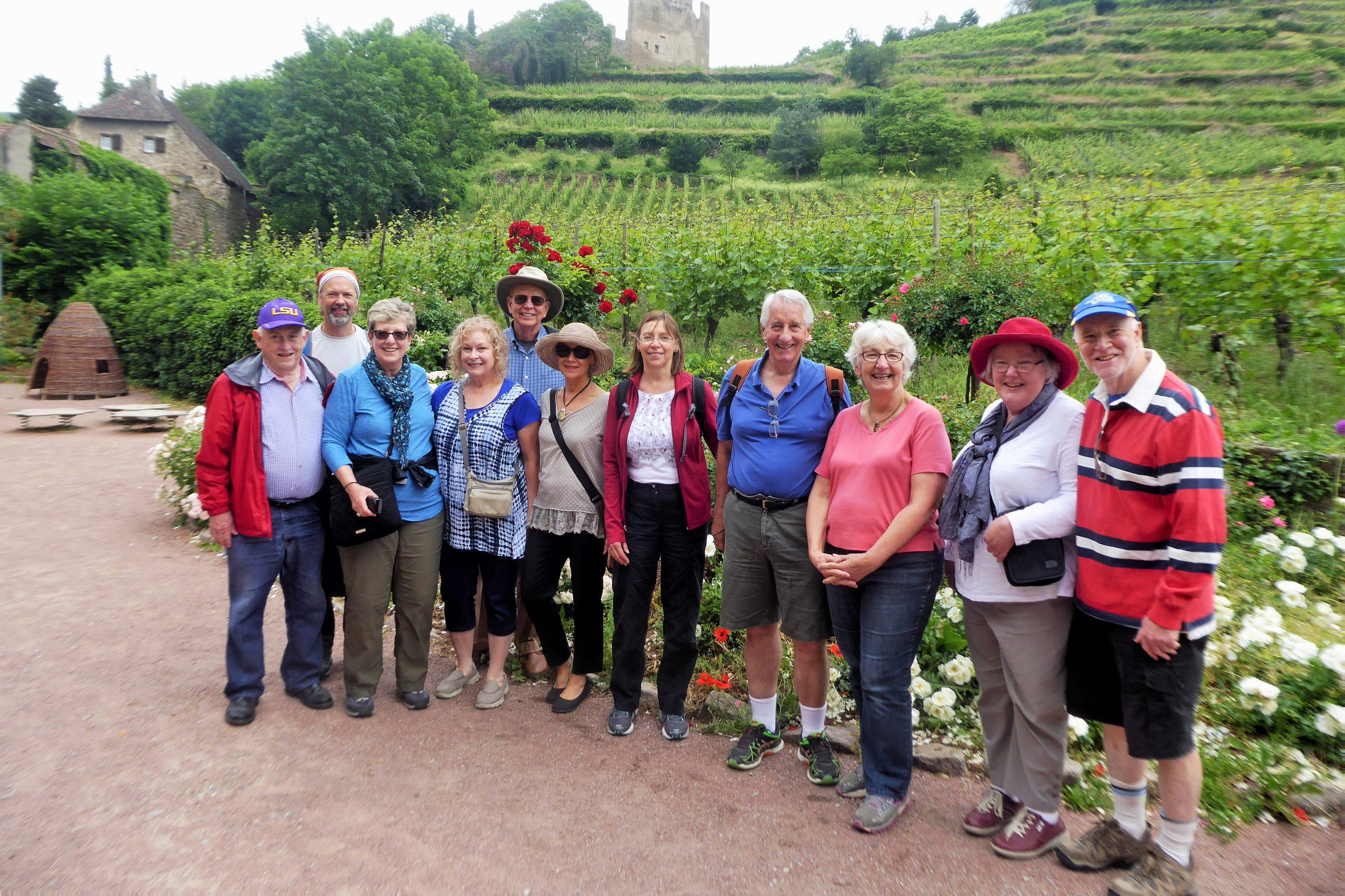 A group of people in front of a vineyard and castle ruins