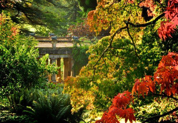 Stunning gardens with the Hindu Bridge at Sezincote © Julian Civiero, courtesy of Sezincote House