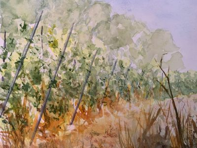 Paint Provence with Tess - vineyard scene