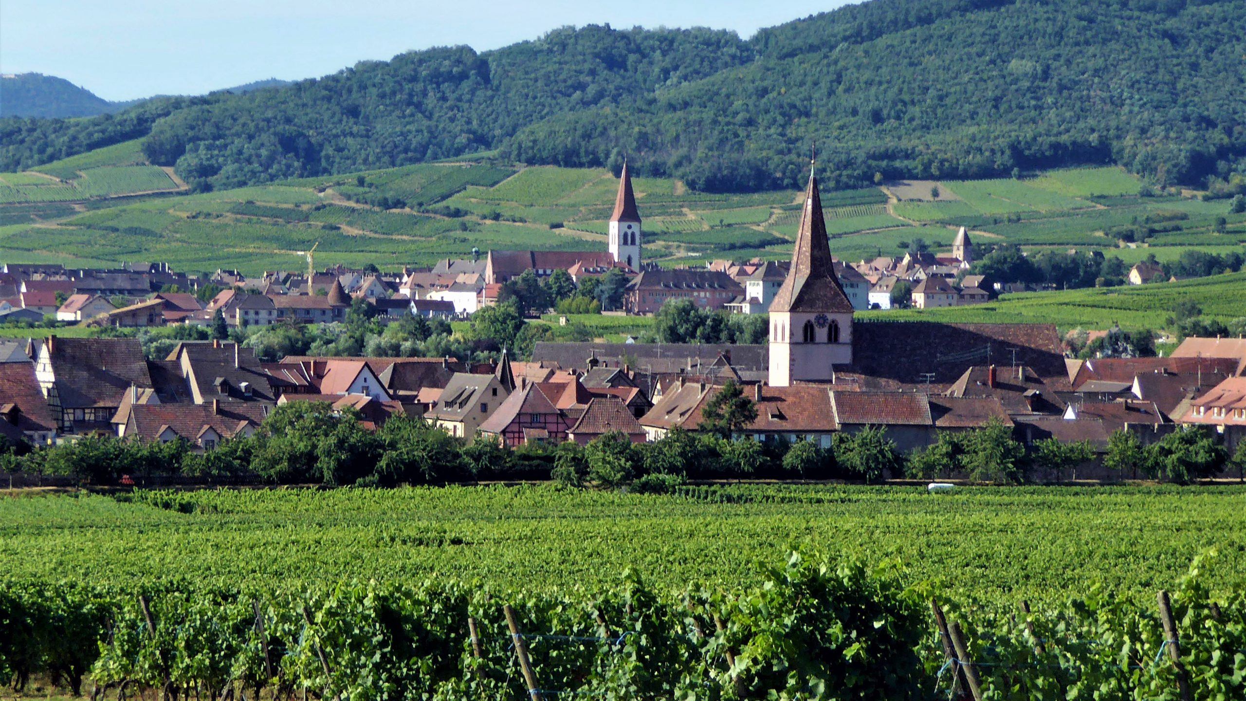 Alsace Experience - Villages in Alsace