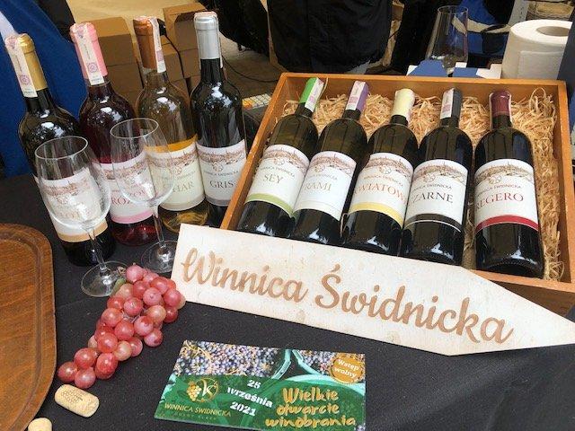 Swidnicka Vineyard in Lower Silesia, Poland
